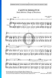 Adiemus: Songs Of Sanctuary: Cantus Insolitus