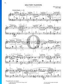 Woodland Scenes, Op.82: No. 3 Solitary Flowers