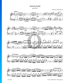 Sonata facile, Op. 49 No. 1: 1. Andante
