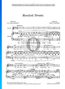 Moonland Dreams