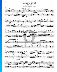 Concerto in G Minor, BWV 983: 1. Allegro