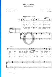 Heidenröslein, Op. 3: n.º 3