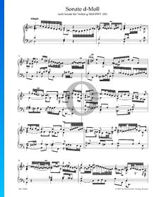 Sonata in D Minor, BWV 1001: 1. Adagio