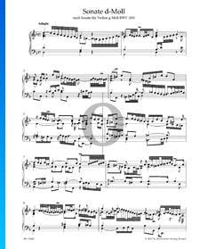 Sonate en Ré mineur, BWV 1001: 1. Adagio