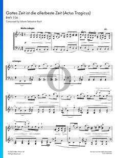 Gottes Zeit ist die allerbeste Zeit (Actus Tragicus), BWV 106
