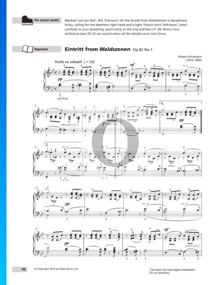 Waldszenen; Op. 82: Nr. 1 Eintritt Musik-Noten