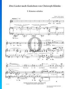 Drei Lieder nach Gedichten von Christoph Klimke: 1. Schatten Schlafen