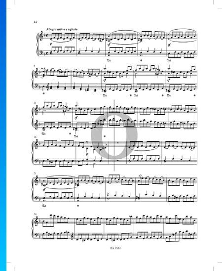 Sonata in D Minor No. 3, Op. 51 P. XII: 40: 2. Allegro molto e agitato Sheet Music