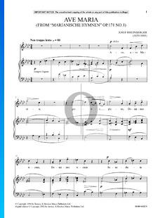 Marianische Hymnen, Op.171 No.1: Ave Maria