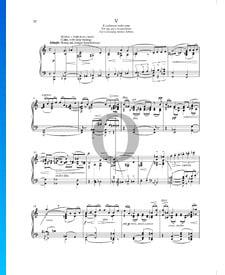 Cosas vividas y soñadas (Životem a snem), Op. 30 n.º 5