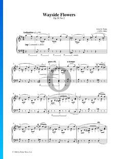 In the Country, Op. 26: n.º 2 Wayside Flowers